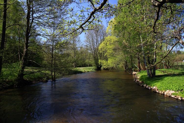 The River Słupia
