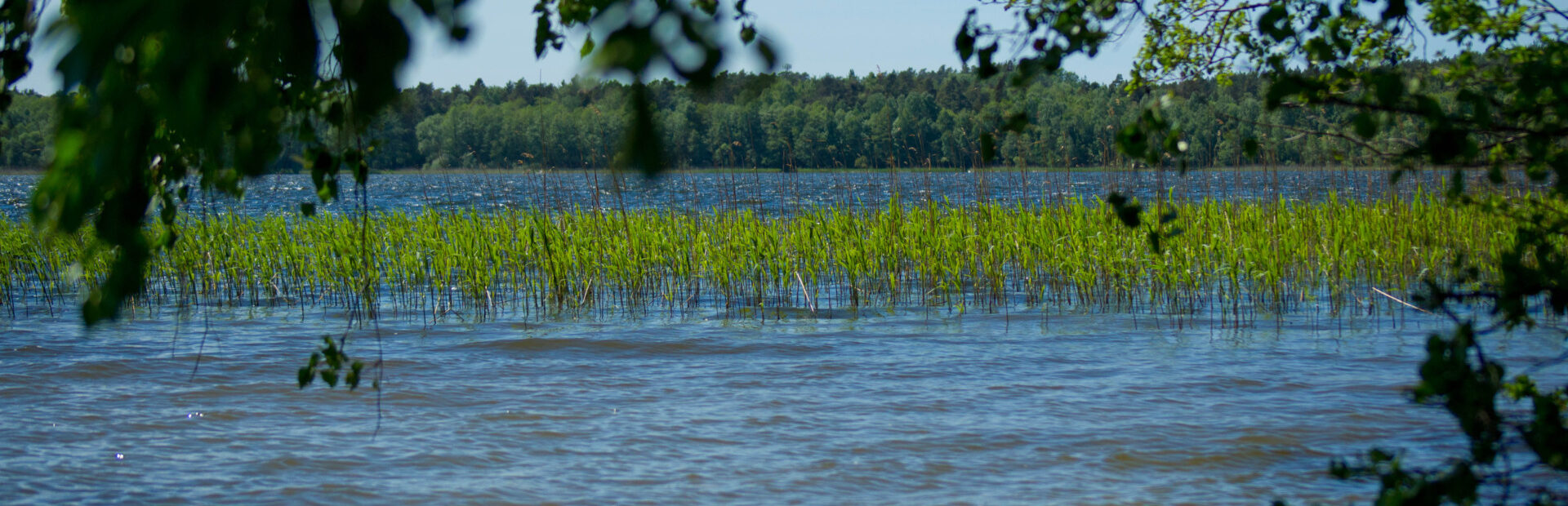 Lake Choczewskie
