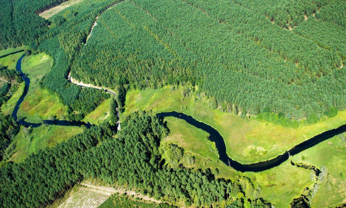 Zaborski Park Krajobrazowy, Brda fot. Styl Beata Chojęta