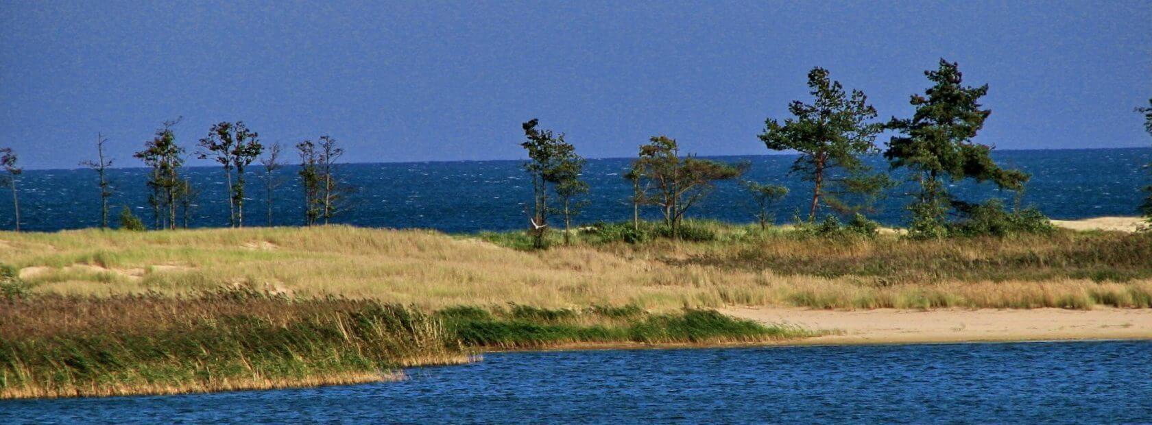 Sobieszewska Island