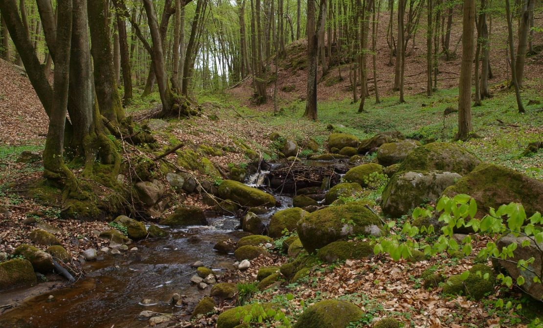 Park Krajobrazowy Dolina Słupi, fot materiały promocyjne