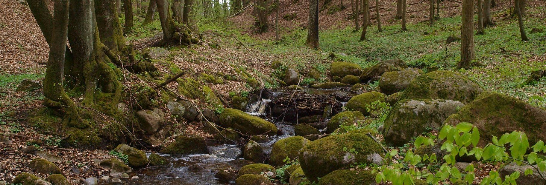 Park Krajobrazowy Dolina Słupi (szlak turystyczny)