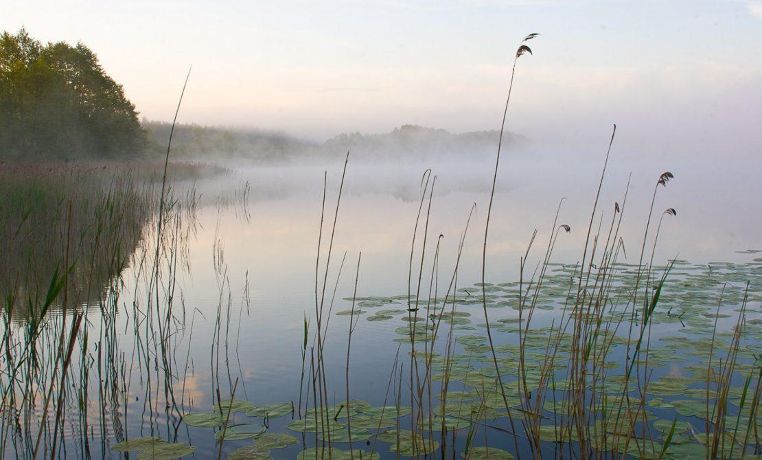 Park Krajobrazowy Pojezierza Iławskiego, jezioro Jeziorak,fot.Maciej Rodziewicz