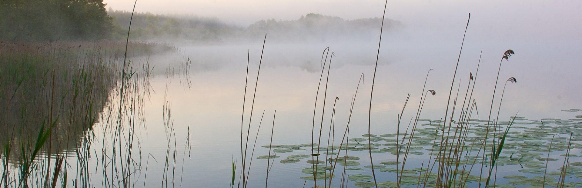 Park Krajobrazowy Pojezierza Iławskiego (ścieżki przyrodnicze)