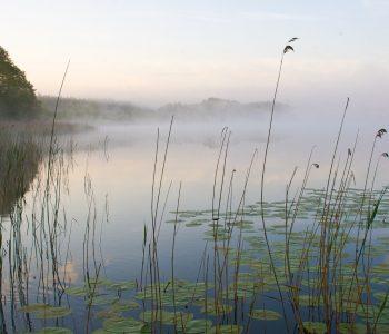 Park Krajobrazowy Pojezierza Iławskiego