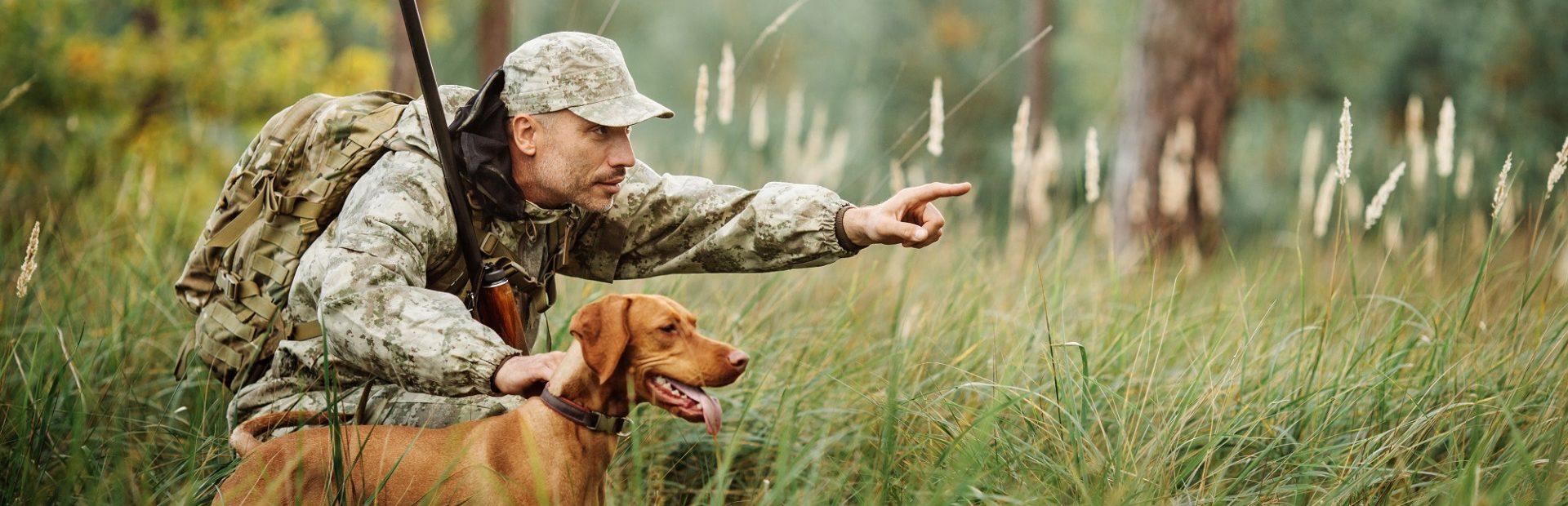 Hunting in Pomorskie