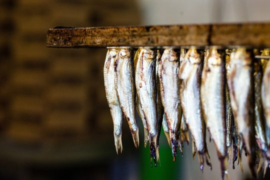 wędzone ryby, Fot. Łukasz Stafiej