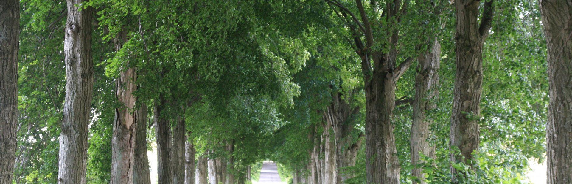 Park Krajobrazowy Dolina Słupi – nature trails