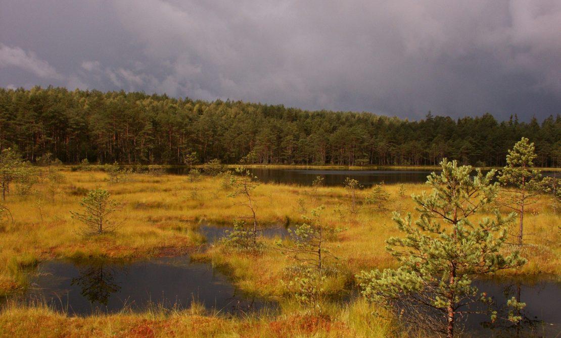 fot. Park Krajobrazowy Dolina Słupi