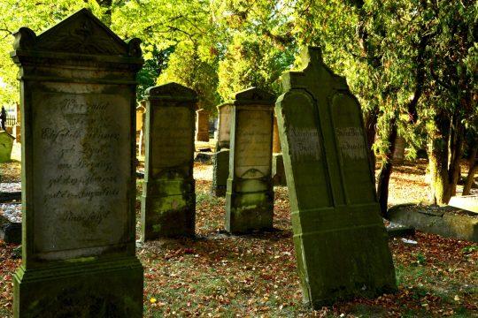 cmentarz mennonicki w stogach malborskich