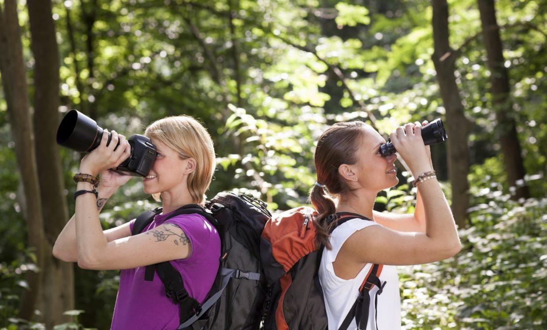 Podglądanie dzikiej przyrody, fot. Diego Cervo - stock.adobe.com