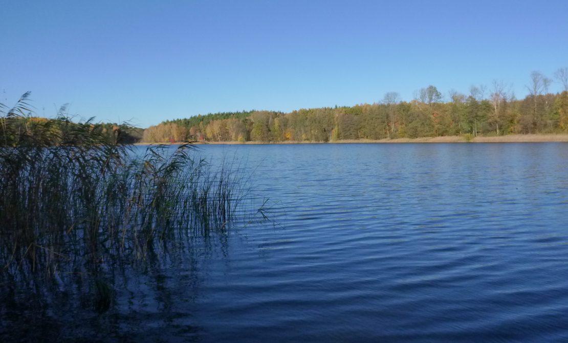 Jezioro Staroleskie