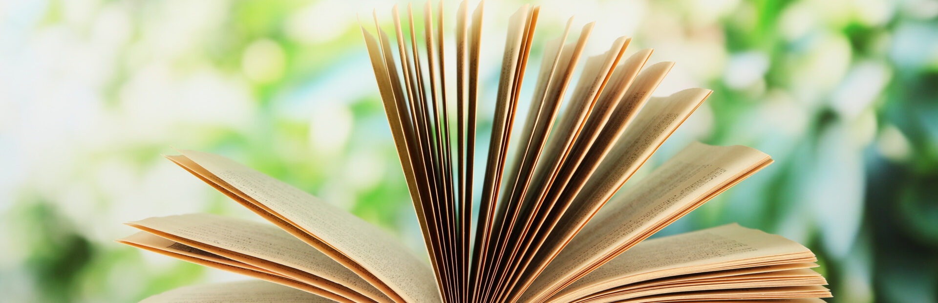 Pomorskie in books