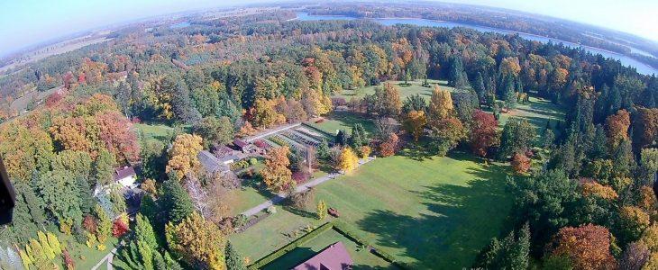 The Wirty Arboretum
