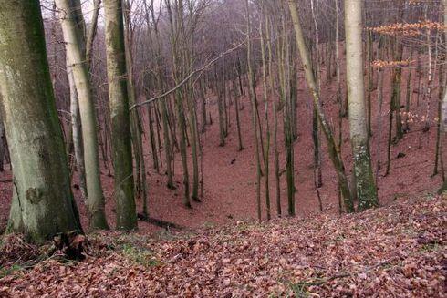 Borkowskie Wąwozy (Borkowo Gorges)