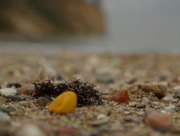 bursztyn na plazy