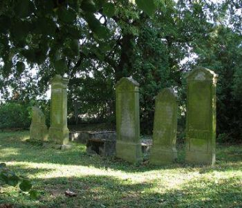 Cmentarz mennonicki w Szaleńcu
