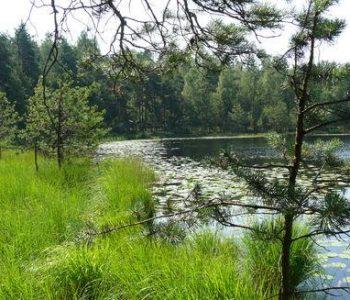 Jeziorka Chośnickie