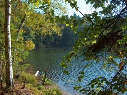 jezioro dobre fot p