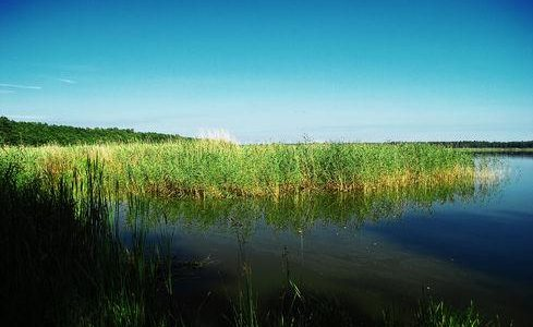 Sarbsko Lake