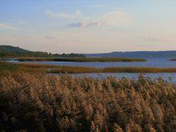 jezioro zarnowieckie 1