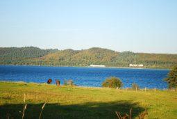 jezioro zarnowieckie 2