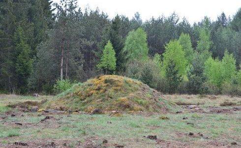 Kamienne Wesele – kręgi kamienne w Trątkownicy