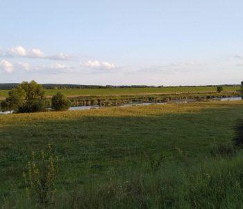 Las Mątawski