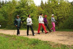 na szlaku nordic walking