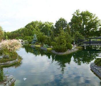 Ogród dendrolgiczny w Orlu