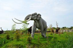 park dinozaurow 2