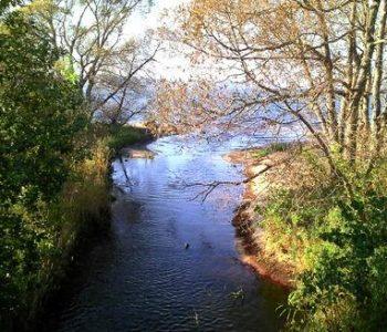 Piaśnica – od Jeziora Żarnowieckiego do Bałtyku