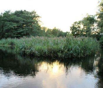 Piaśnickie Łąki (Piaśnica Meadows)