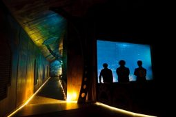 pomorskie travel park rekreacyjno edukacyjny sea park w sarbsku 3