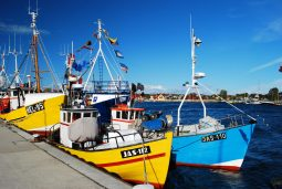 port rybacki w jastarni