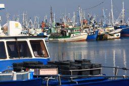 port we wladyslawowie