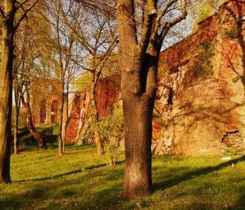 Pozostałości średniowiecznych murów obronnych miasta Malborka