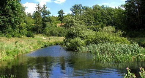 Trójmiejski Park Krajobrazowy, fot. Pomorskie Travel