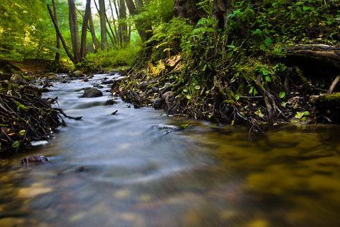 Przez Trójmiejski Park Krajobrazowy – trasa B