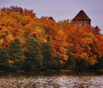 Ruiny zamku w Przezmarku