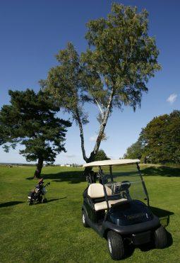 sierra golf club 5