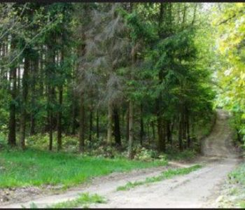 Szemud: route no. 34 (black)