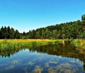 Szlak kajakowy na rzece Trzebiocha