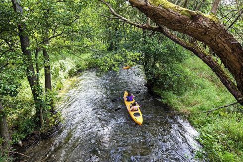Szlak Kajakowy na rzece Wdzie