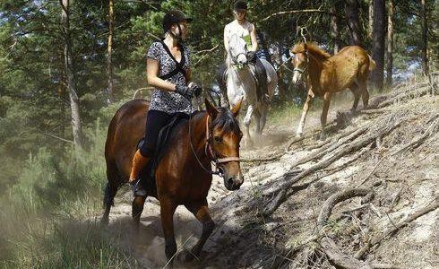 The Daniel Chodowiecki walking and horse-riding trail