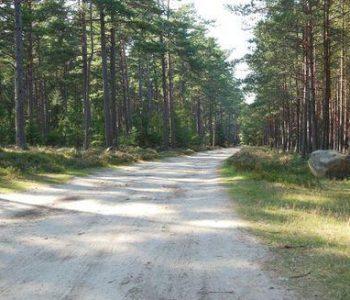 Trasa nr 12 Białogóra (żółta)