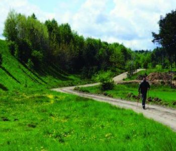Trasa nr 17 Morzyc (zielona)