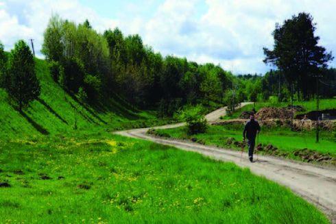 Route no. 17 Morzyc (green)