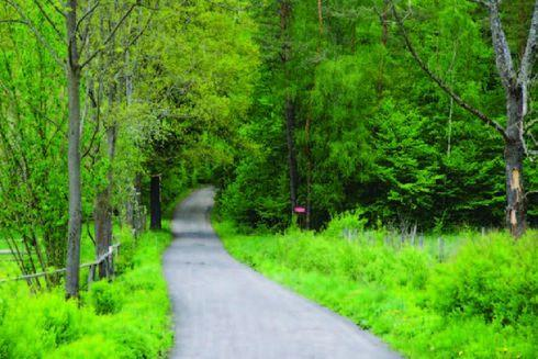 Route no. 25 Polna (green)