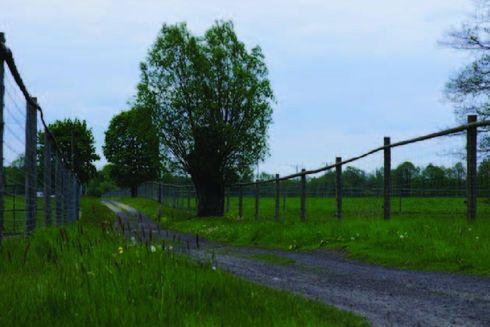Trasa nr 27 Leśna (czarna)